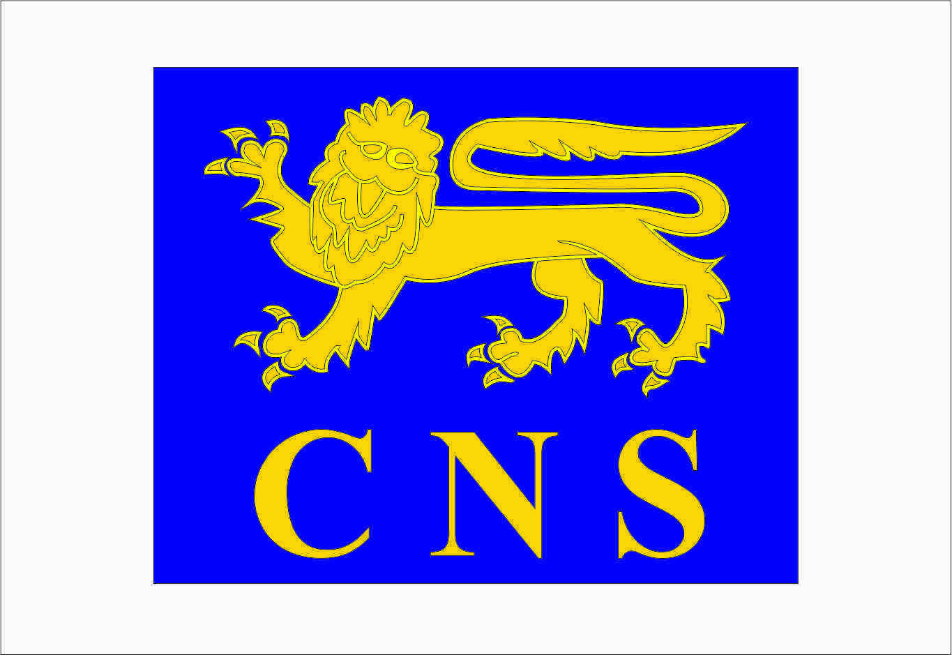 Cns - City Of Norwich School