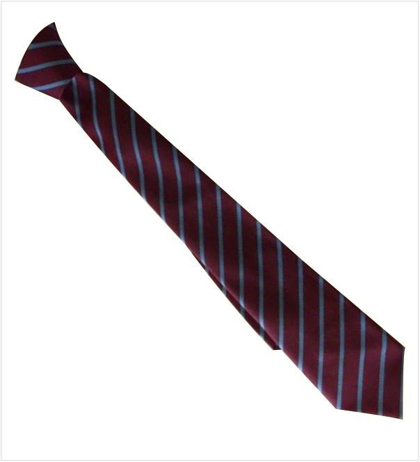 Hellesdon High Main Tie