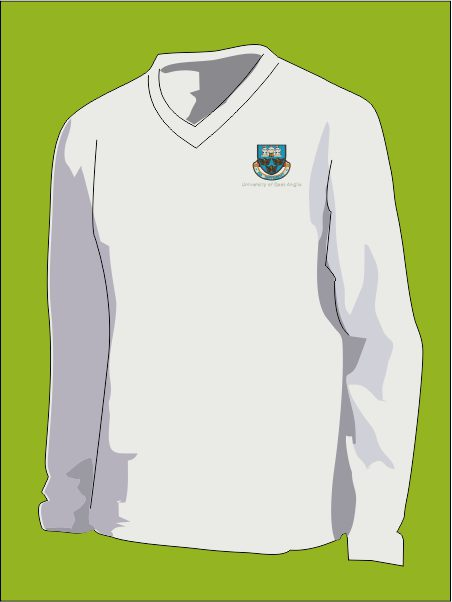 Uea Cricket Sweater