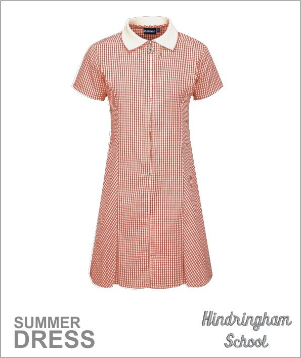 Summer Check Dress