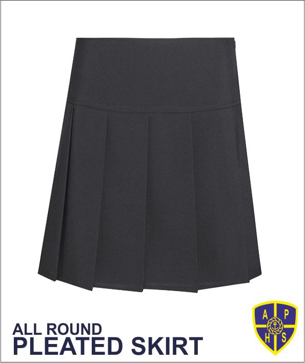 All Round Pleated Skirt Dl976