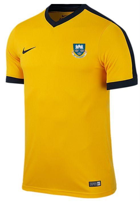 Uea Futsal Nike Striker T