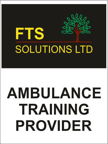 Fts Solutions Logo