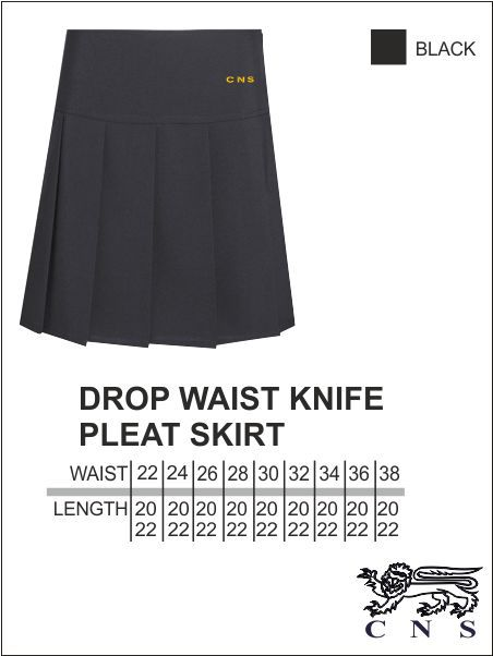 Cns Pleast Skirt