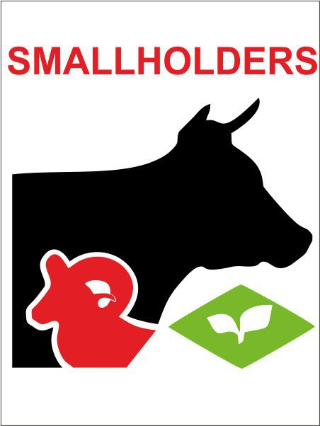 Smallholders Clubs
