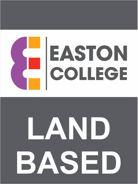 Land Based Logo