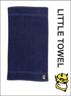 Little Towel